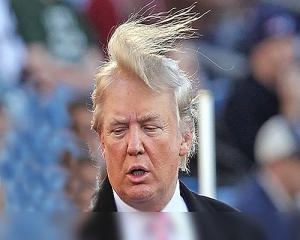 trump-hair-e1445973504591.jpeg